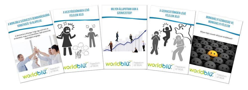 WorldBlue 5 tanulmány